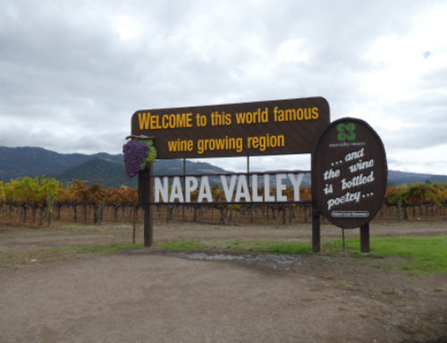 After the Fire – Napa Valley, CA